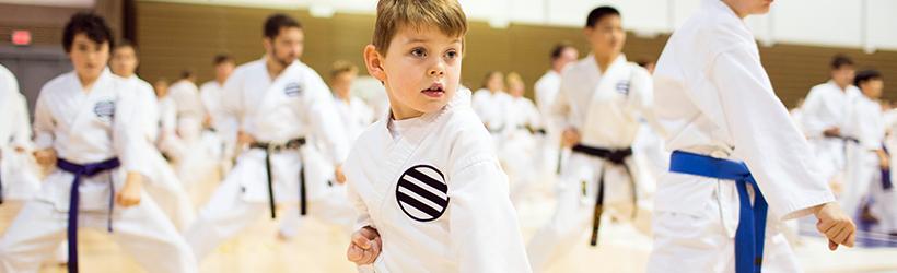 Karate, Judo, and Taekwondo