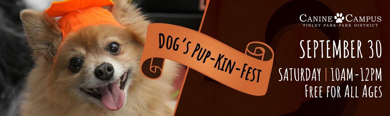 101347_Dogs Pupkin fest slider_1_071917